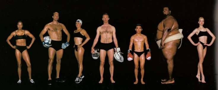 fitness body types
