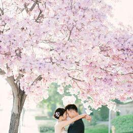 Svadba vesnoi  (6)