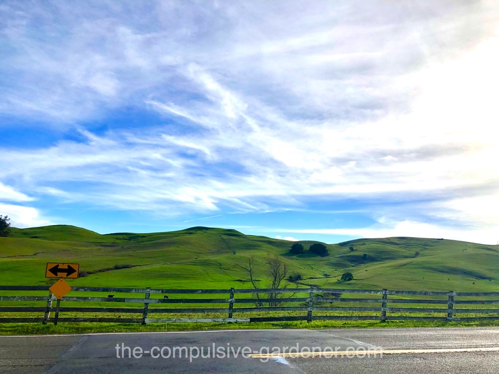 Sonoma County ranch land