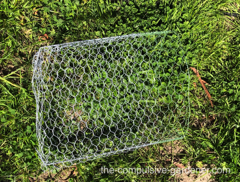 Gopher Basket -- ready for planting