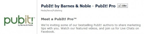 B&N Pubit! Pro is up and running eBookstore