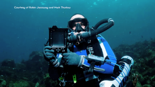 Under the Sea with the Sony Reader e-Reading Hardware