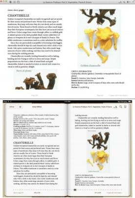 ibooks for OSX monstrosity