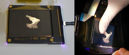 Merck, FlexEnable Demo a Flexible Plastic-LCD Prototype e-Reading Hardware Screen Tech