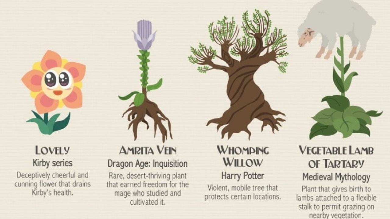 Infographic Eighty Fictional Plants The Digital Reader