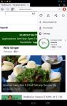 Opera Mini's New Data-Saving Option Trades Page Quality for Data Savings Web Browser