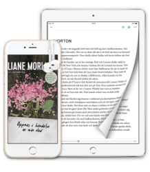 Bonnier's eBook Subscription Service Launches in Beta Publishing Streaming eBooks