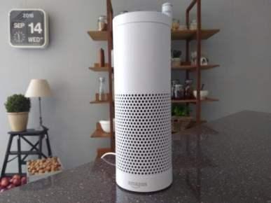 Amazon Sweeps US Market for Voice-Controlled Speakers: Study Amazon e-Reading Hardware