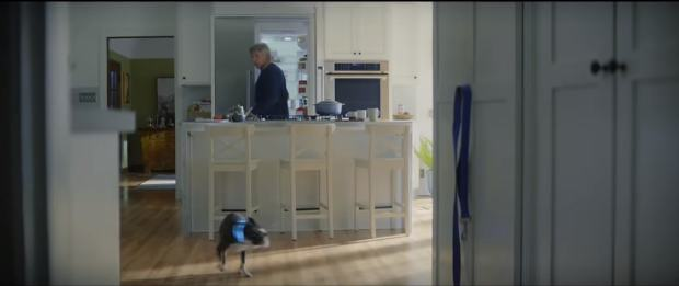 discount exquisite style huge discount Amazon's Super Bowl Advert Features Harrison Ford, and a ...