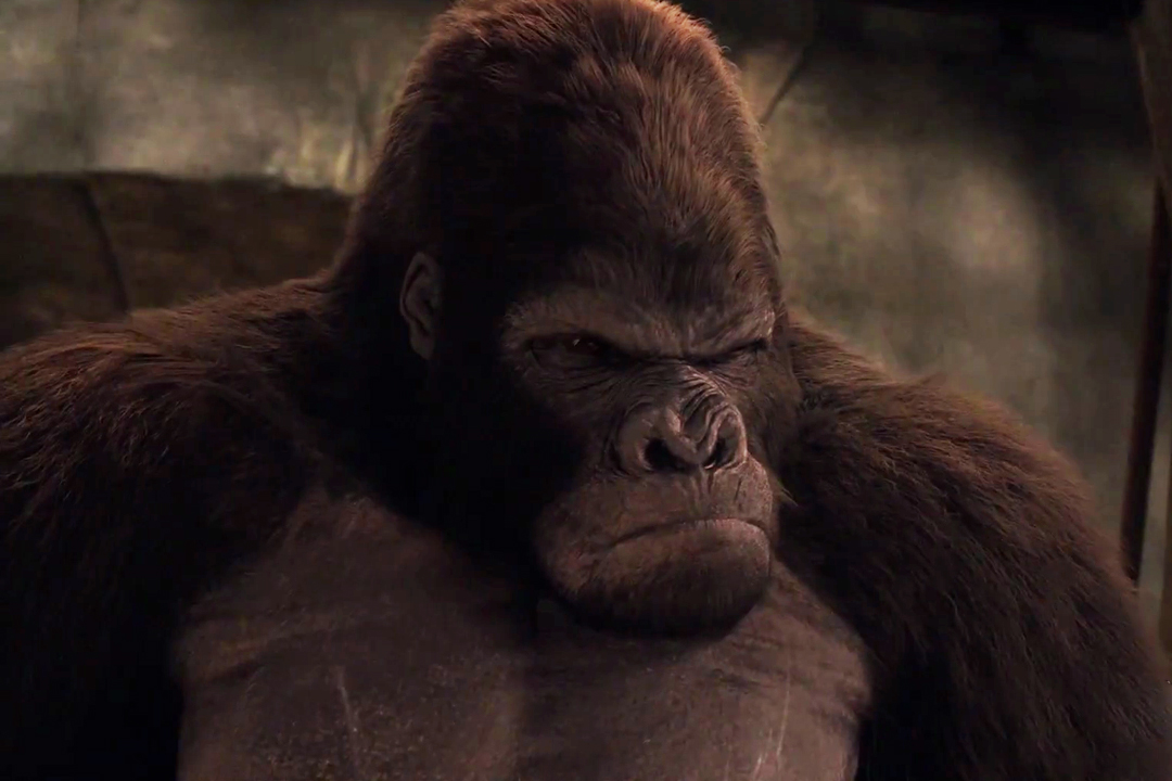 "THE FLASH: ""Attack on Gorilla City"" RECAP"