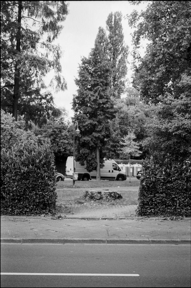 Bild der KW46: Hecke weg