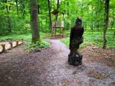 Die Eule im Waldschulzimmer