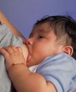 Mit der Muttermilch fängt die Umami-Sucht an (Foto: USDA, public domain)