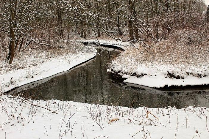 Der Schwarzbach bei Ratingen im Winter (Foto via Wikimedia)