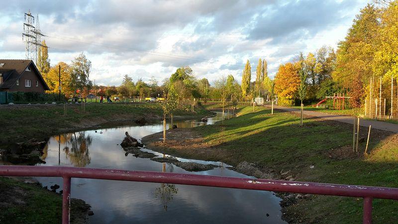 Die südliche Düssel im Normalzustand (Foto: Stadtentwässerungsbetriebe)