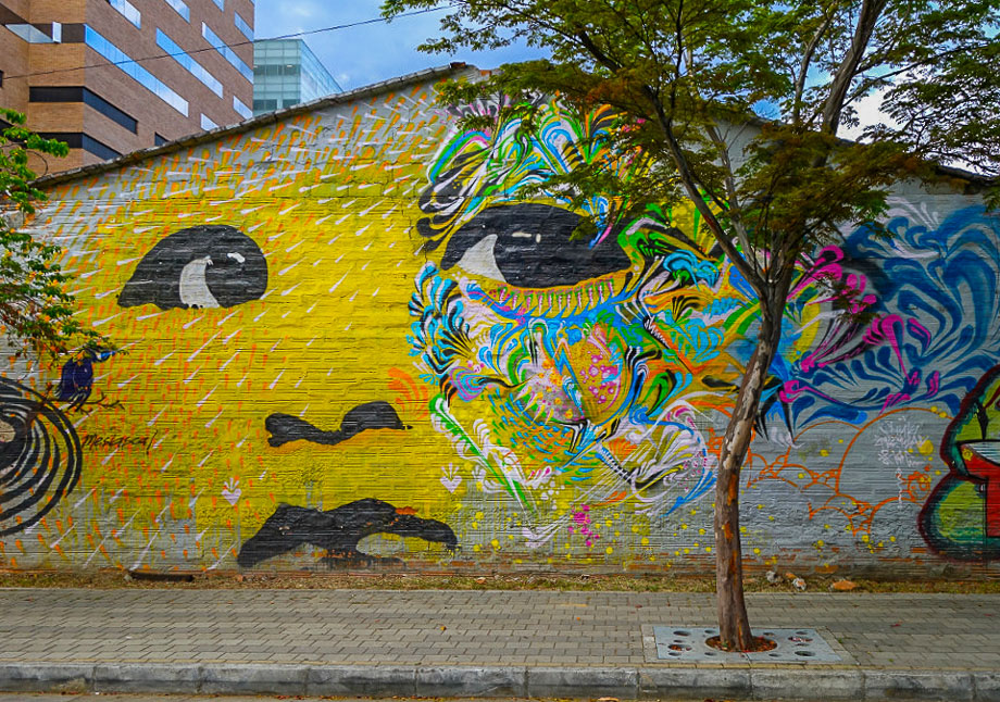 Street Art Medellin - The Earlybird