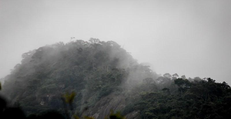 week-36-echo-1-rain