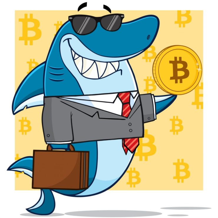 Cryptocurrency Roundup App Gets $100,000 Shark Tank Investment