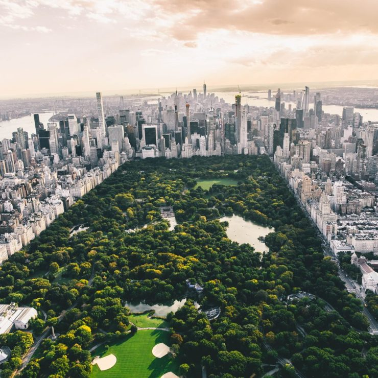 The Daily: New York Establishes Crypto Task Force, Novogratz Buys More of Galaxy Digital