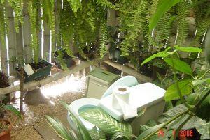 """Tourism experiences: """"eco-toilet"""" in Guatemala"""