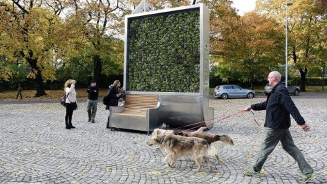 The CityTree includes Wi-fi enabled sensors that measure the local air quality.