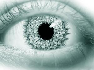 FWSA eye