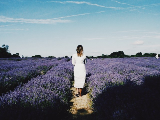 The-FT-Times-Blogger-in-white-dress-in-lavender-field