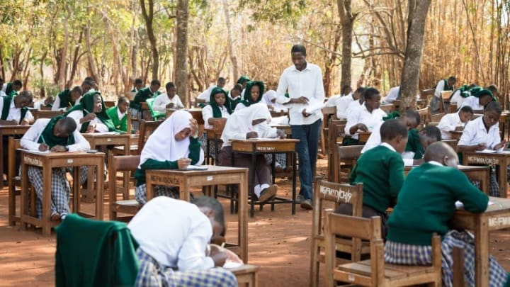 Image Credit: https://www.devex.com/news/despite-us-and-civil-society-objections-world-bank-approves-tanzania-loan-96910