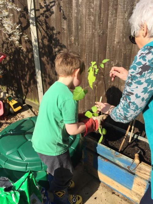 gardening with nanny