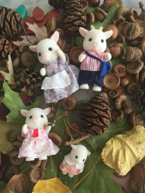 Sylvanian Families in nature