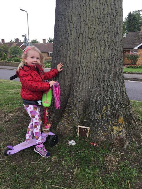 fairy door in a tree