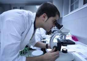 Scientists in a laboratory. Image from Saint Louis University Madrid Campus via flickr (CC BY-ND 2.0)