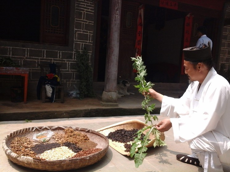 Li Shifu, daoist master gives Traditional Chinese Medicine course in the Wudang mountains