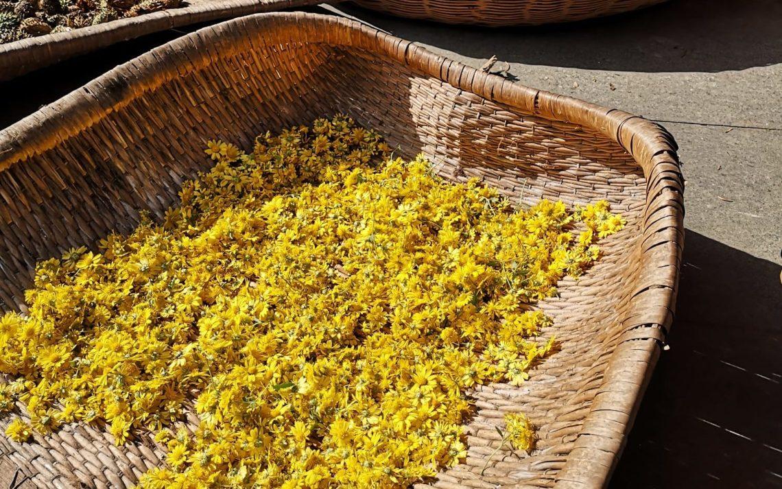 chrysanthemum flowers in a basket