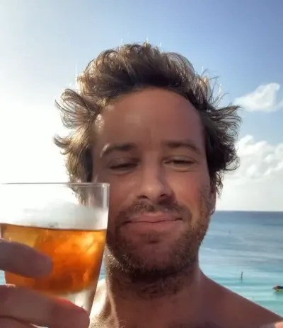 Armie Hammer Toasts the End of 2020