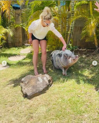 Britney With a Pig
