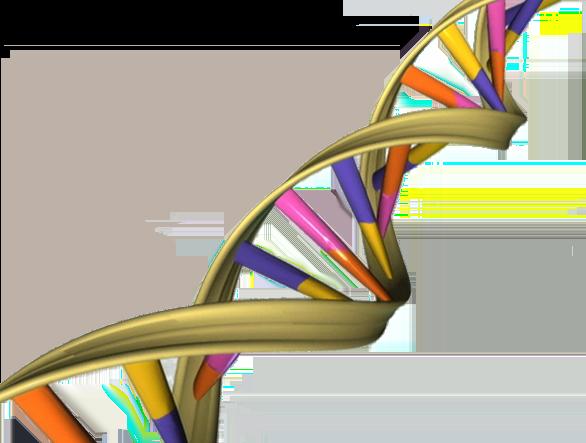 DNA_Double_Helix_medical breakthrough INKLINE