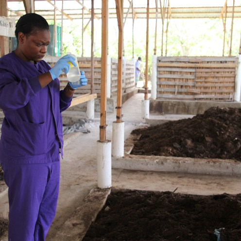 Conducting test on the composting process at SOIL's waste treatment facilities in Northern Haiti, Vic Hinterlang