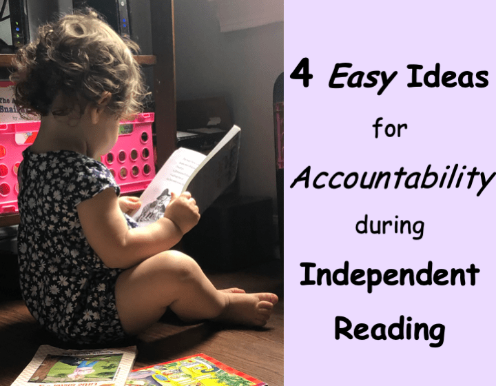 Independent Reading Accountability: 4 Easy Ideas