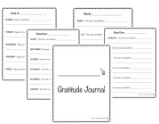 gratitude journal example