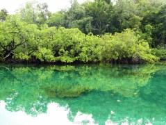 Hidden Bay - Raja Ampat