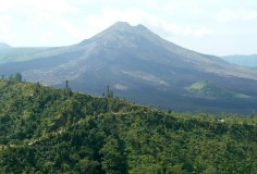 kintamanibatur_00010