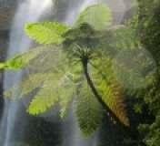 thumbs_waterfall_00001