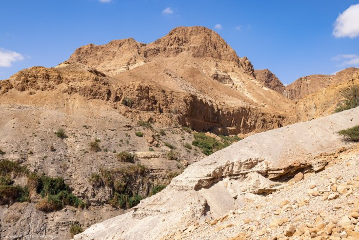 Tsafit trail and Nahal David in the Ein Gedi nature reserve