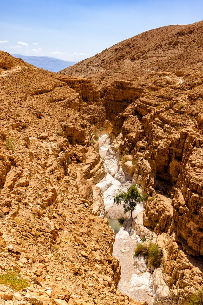 Trockener Canyon bei En Gedi