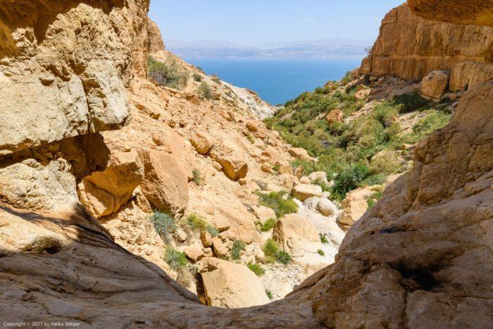 Blick vom Fenster-Wasserfall auf Nahal David und das Tote Meer