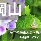 okayama-tsuyu