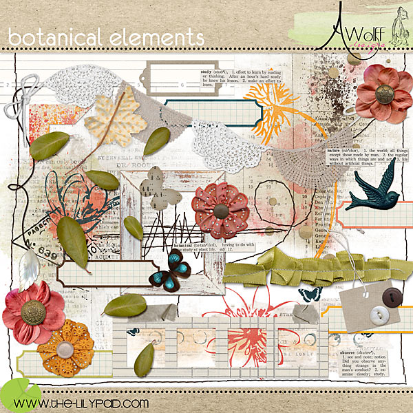 Botanical Element Pack