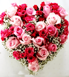 red-pink-rose-all-rose-heart-arrangement-heart-arrangement-rose-valentines-flowers-bouquets-the-little-flower-shop-florist-min