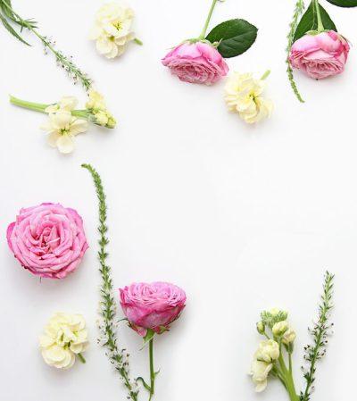 pink-flowers-promo-the-little-flowershop-london-flower-arranging-courses-flowers-classes-london-learn-to-arrange-flower-bouquets